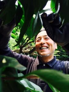 庭園管理の植木職人